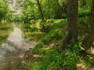 0 Little River Crossing NW, Riner, VA 24149