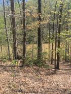 Lot 73 Pine Ridge DR, Hardy, VA 24101