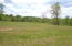 Lot 52 Constitution BLVD, Wirtz, VA 24184