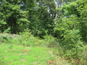 Lot 26 Afton LN, Goodview, VA 24095