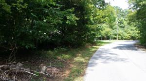 Lot 55 Gap Bridge RD, Moneta, VA 24121