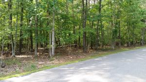 Lot 48 Forest Lawn DR, Moneta, VA 24121