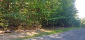Tract G Cove Side LN, Moneta, VA 24121