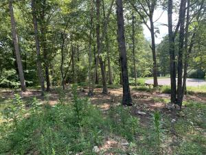 Lot 27 Lake Edge DR, Moneta, VA 24121