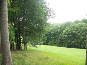 LOT 32 Back Nine DR, Moneta, VA 24121