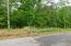 Lot 63 Gap Bridge RD, Moneta, VA 24121