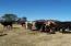 0 Nester RD, Thaxton, VA 24174
