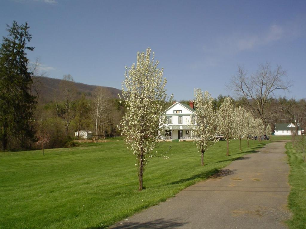 Photo of 6400 Longdale Furnace RD Clifton Forge VA 24422