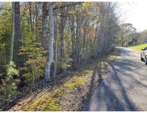 Lot 11 Little Creek RD, Moneta, VA 24121