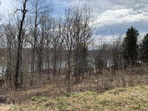 Lot 3 Hales Ford RD, Moneta, VA 24121