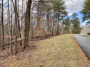 Lot 66 Ridgeway CT, Moneta, VA 24121