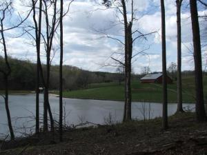 Lot 13 Sassafras CT, Moneta, VA 24121