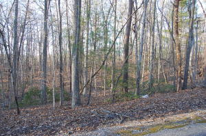 Lot 28 Mulberry Bush LN, Moneta, VA 24121