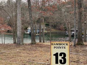 LOT 13 Hammock Pointe DR, Moneta, VA 24121