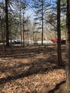 Lot 17 Oak Hollow RD, Moneta, VA 24121