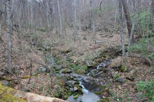 0 Shooting Creek RD SW, Floyd, VA 24091