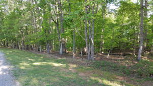 LOT 16 Cedar Bluff LN, Hardy, VA 24101