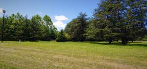 Lot 18 Golf View CT, Huddleston, VA 24104