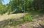 Lot 24 Dudley Amos RD, Moneta, VA 24121