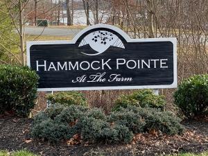 LOT 3 Hammock Pointe DR, Moneta, VA 24121