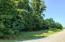 Lot 15 &16 INDEPENDENCE LN, Wirtz, VA 24184