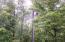 Power Pole Dusk to Dawn Light