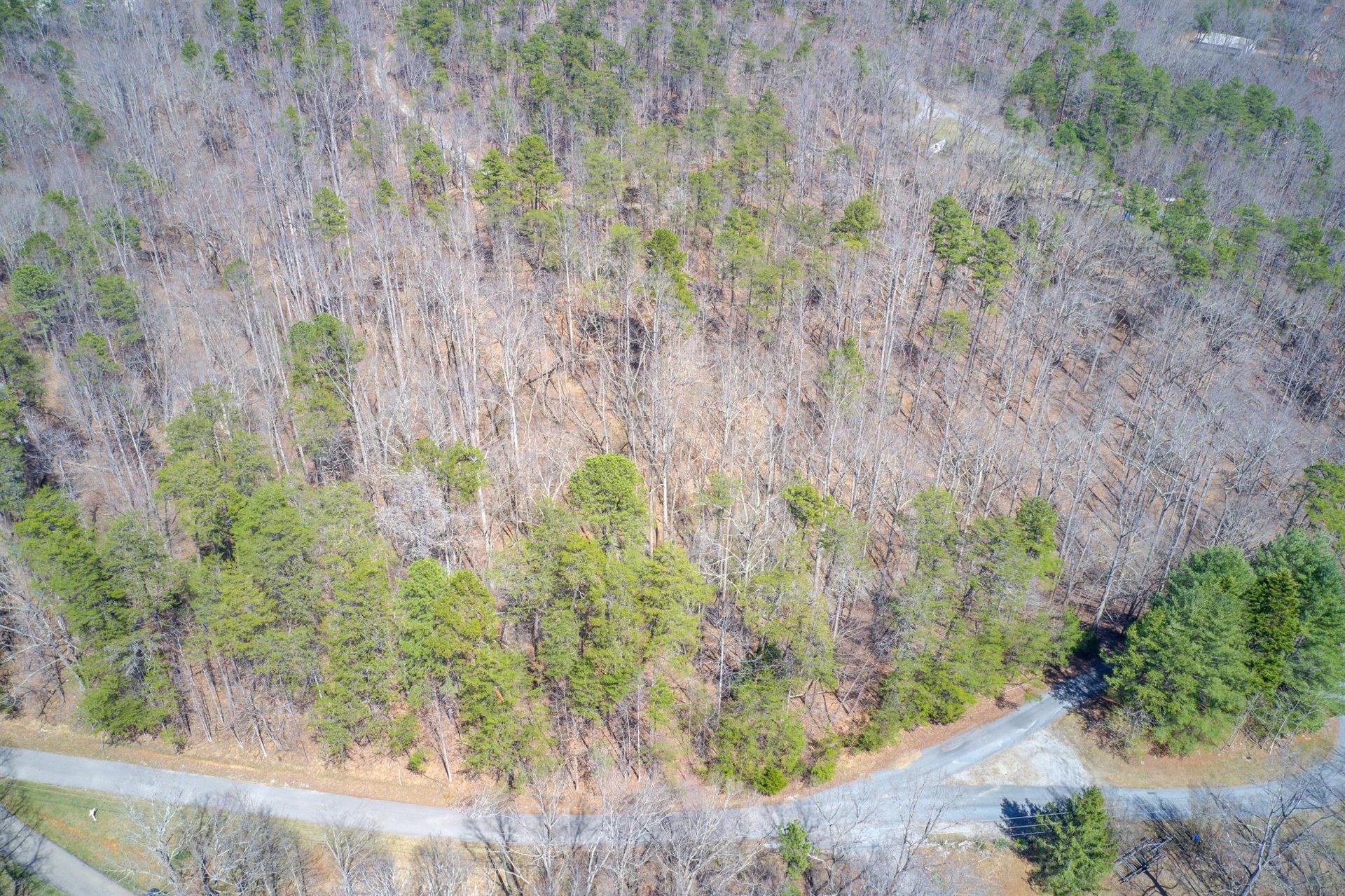 Photo of Lot 57 Pine Ridge DR Hardy VA 24101