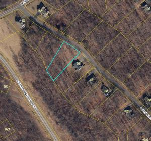 LOT 4 LEEWARD DR, Moneta, VA 24121