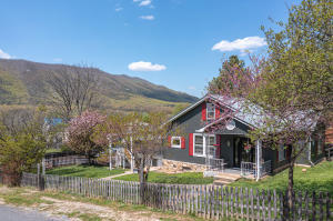 117 16th ST, Buchanan, VA 24066