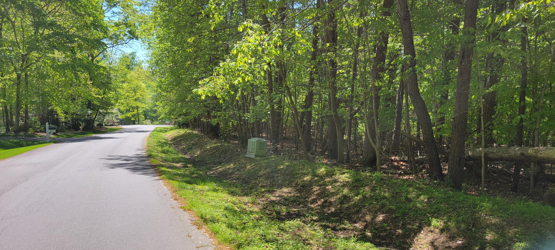 Photo of Lot 368 Morgans Mill DR Penhook VA 24137