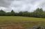 411 FOREST SHORES RD, Wirtz, VA 24184