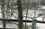 Winter is coming! Bird in the tree last winter.