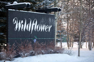 665 Wildflower Condo Drive, Sun Valley, ID 83353