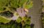105 Audubon Pl, Hailey, ID 83333