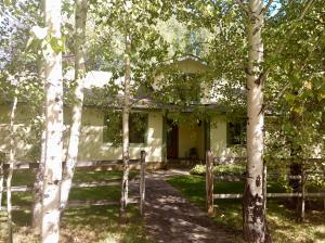 Front of home framed by mature trees