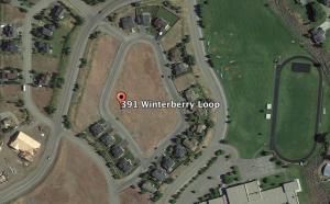 391 W Winterberry Loop, Hailey, ID 83333