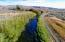 Priest Road, Picabo, ID 83348