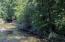 Trail Creek flows alongside the property