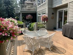 Living / Dining deck