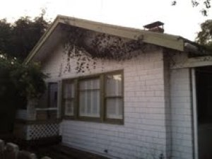 132 W Haley St, SANTA BARBARA, CA 93101