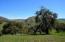 9955 Alisos Canyon Rd, LOS ALAMOS, CA 93440
