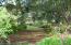 Vacant lot gardens