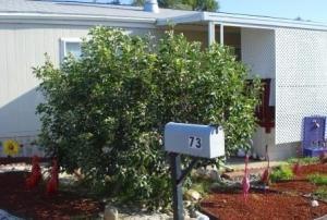 80 Zaca St, 73, BUELLTON, CA 93427
