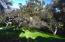 734 Monte Dr, SANTA BARBARA, CA 93110