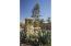 3493 Padaro Ln, SANTA BARBARA, CA 93101