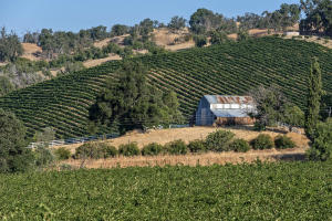 9480 Chimney Rock Rd, PASO ROBLES, CA 93446