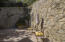 Rear patio with Beautiful Stonework