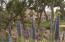 854 Park Ln, SANTA BARBARA, CA 93108