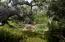 720 El Bosque Rd, SANTA BARBARA, CA 93108