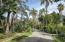 Palm-lined driveway with towering 50-foot palms imported from the former Potter Hotel site on West Beach
